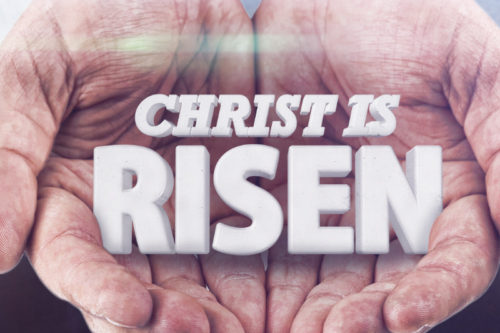 Jesus The Risen King | Matthew 28