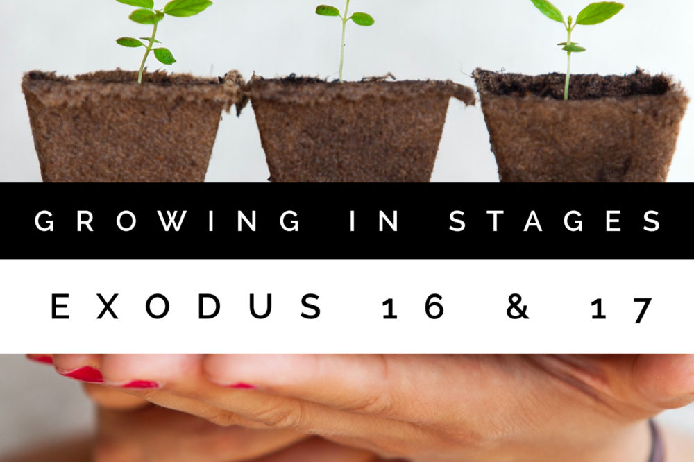 Growing In Stages | Exodus 16 & 17