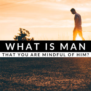 What Is Humanity?   Psalm 8
